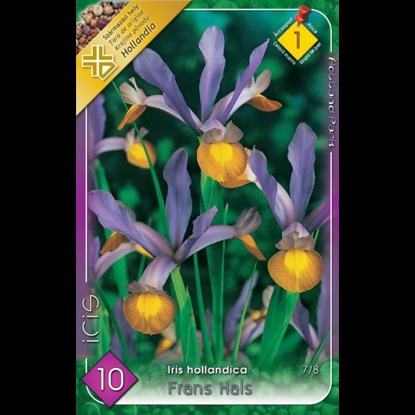 154634_01_vh-1-iris-frans-hals-cirmos.png