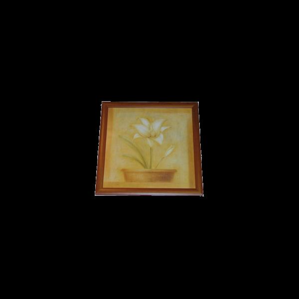 165417_01_ema3-50x50-cm-euro-kep.png