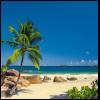 281142_02_fototapeta-sunny-decor-seychellen.png