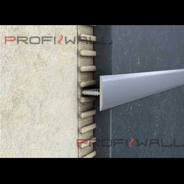 291004_01_alu-t-profil-25mm-elox-ezust.png
