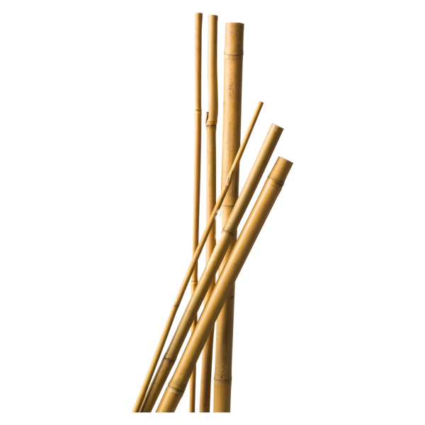 291930_01_bambusz-novenytamasz-natur-4db.png
