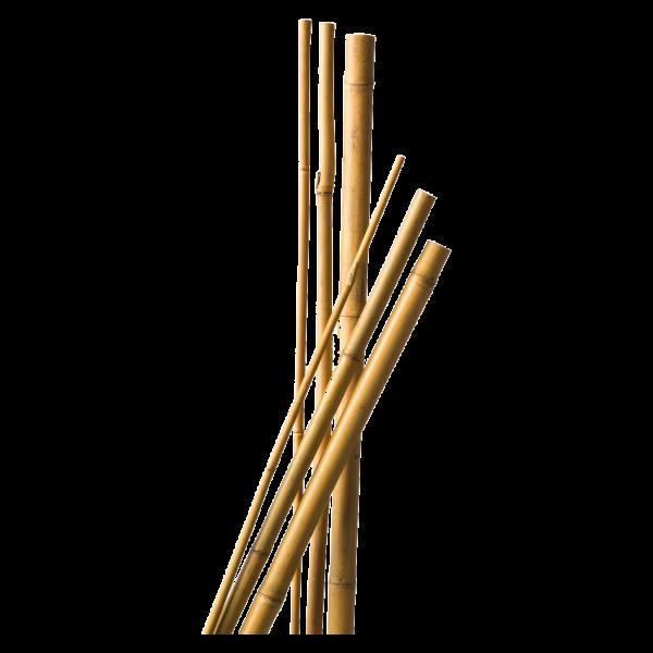 291933_01_bambusz-novenytamasz-natur-3db.png