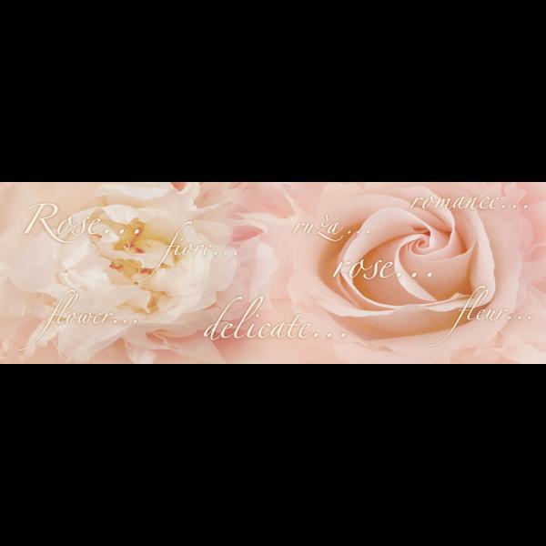 293022_01_gemma-dekor-rose-20x60cm-xkapx.png