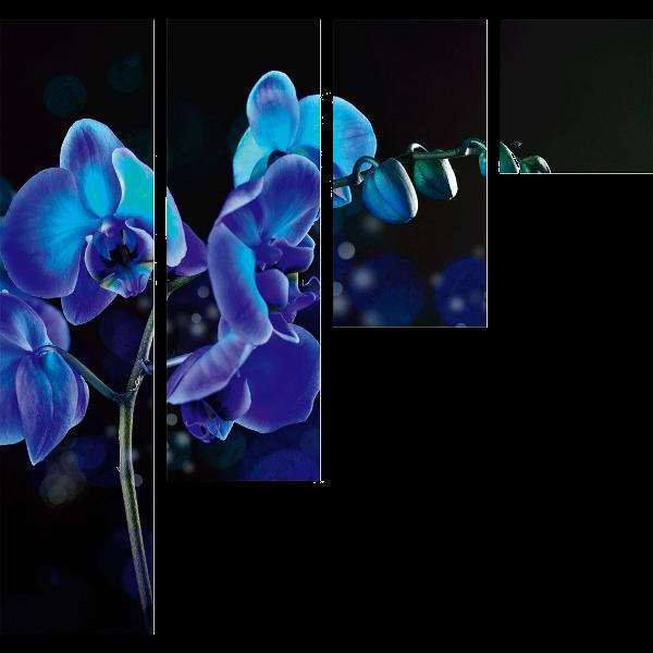 297339_01_vaszonkep-komplex-127x120cm-titokzatos-orchidea.png