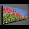 298567_04_vaszonkep-panorama-90x30cm-tavaszi-mezo.png
