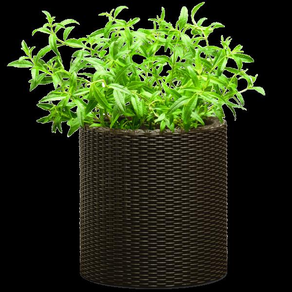 299228_02_viragtarto-s-cylinder-planter.png