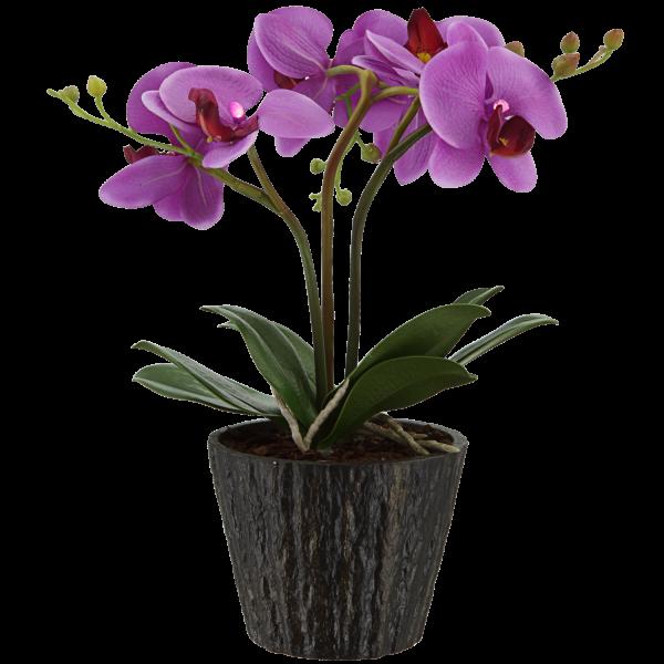 300008_01_orchid-viragcserep-7xled-0-06w-4-5v.png