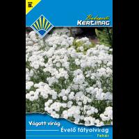 Vágott virág Évelő fátyolvirág Fehér
