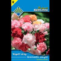 Vágott virág Grenadin szegfű Színkeverék